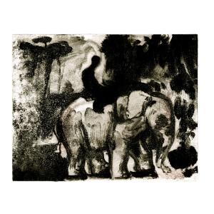 elephan 600